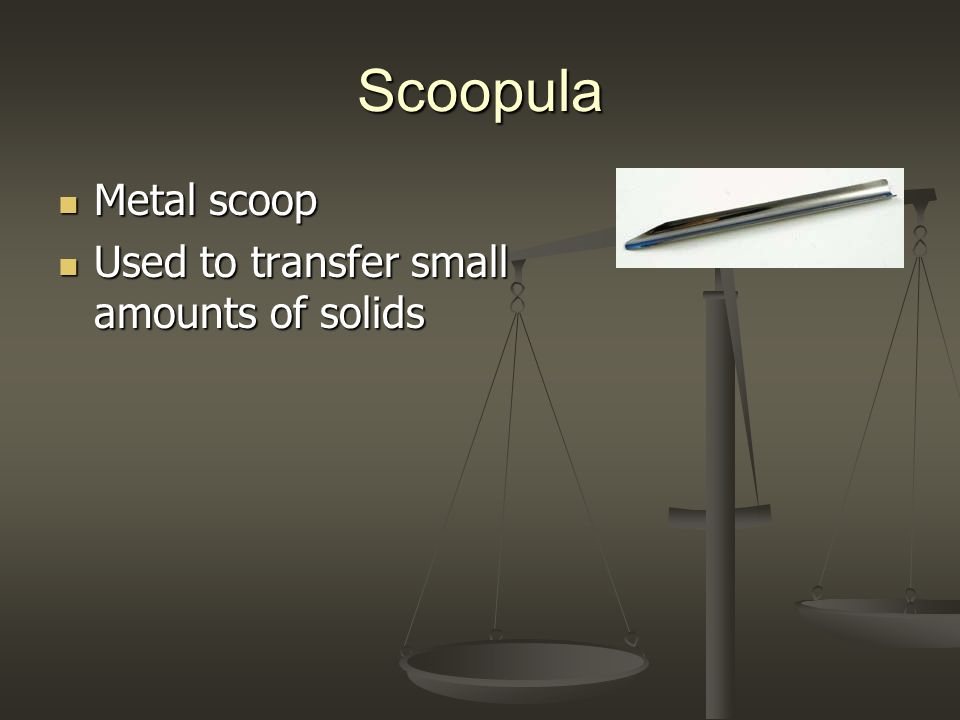 Scoopula Metal scoop Used to transfer small amounts of solids