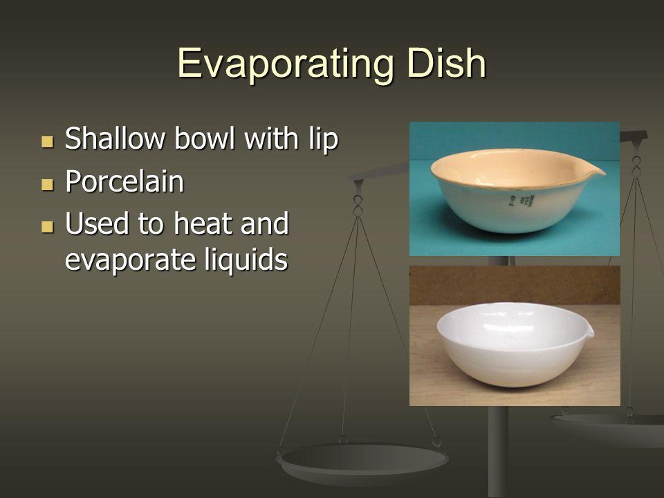 Evaporating Dish Shallow bowl with lip Porcelain