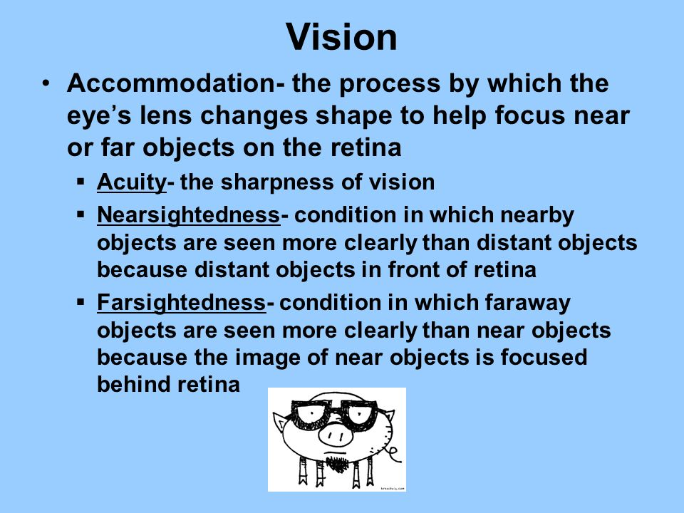 Vision Accommodation- the process by which the eye's lens changes shape to help focus near or far objects on the retina.