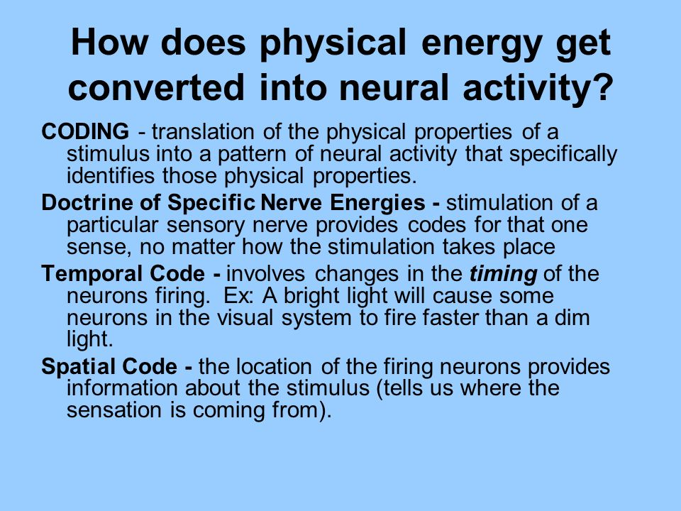 How does physical energy get converted into neural activity
