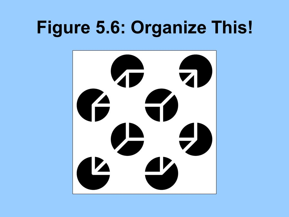 Figure 5.6: Organize This!
