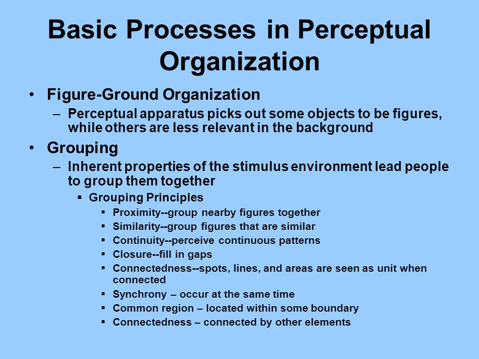 Basic Processes in Perceptual Organization