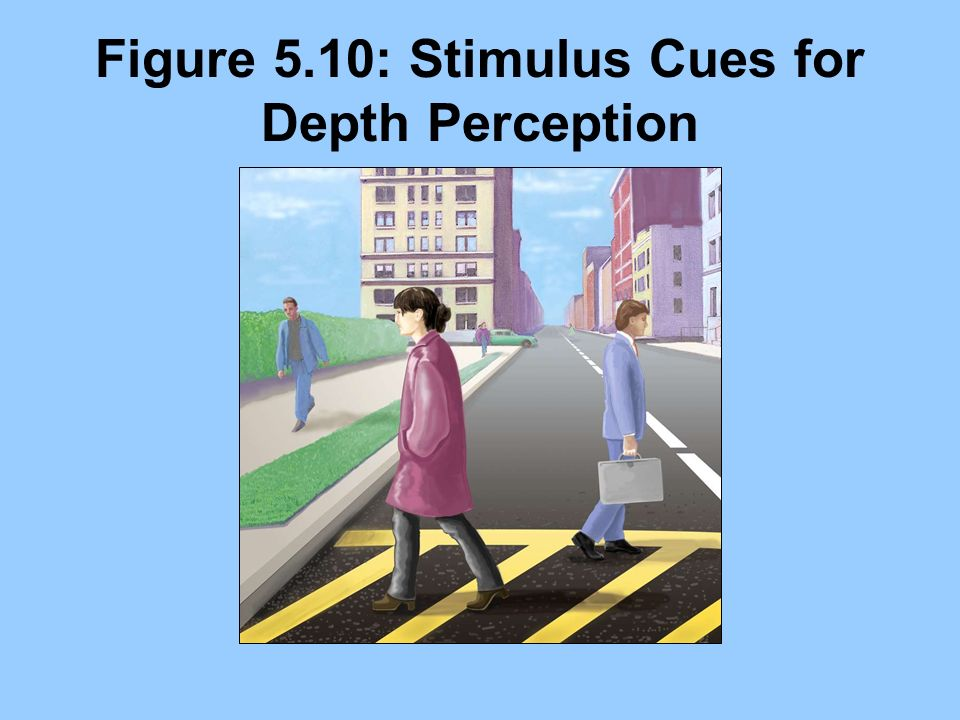 Figure 5.10: Stimulus Cues for Depth Perception