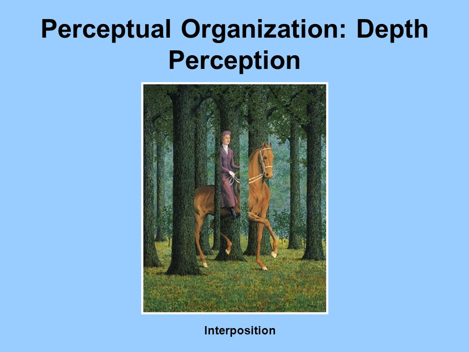 Perceptual Organization: Depth Perception
