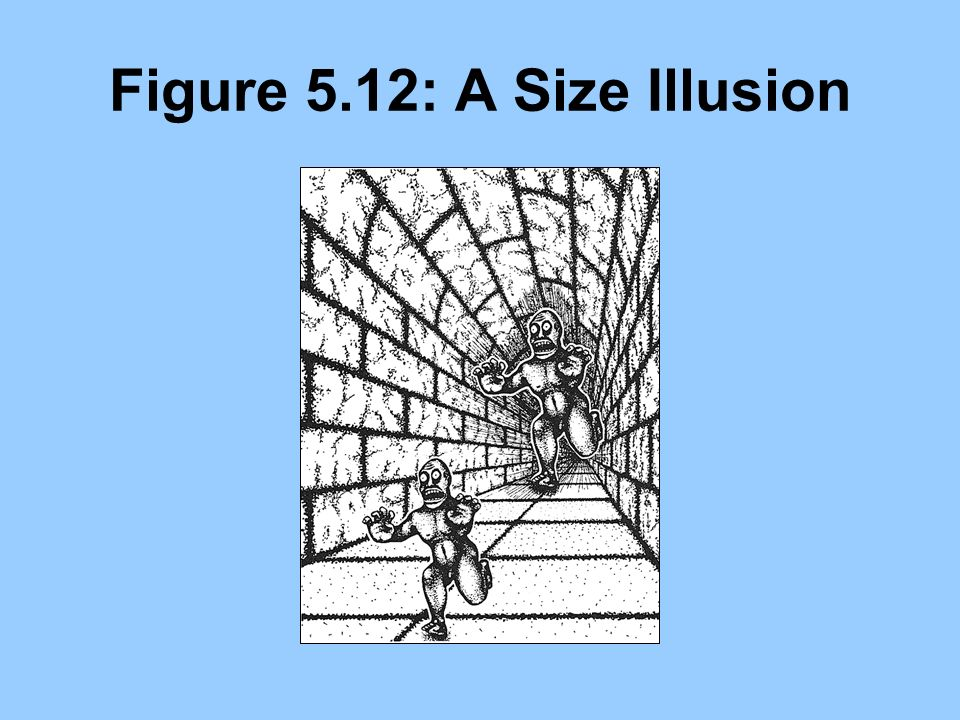 Figure 5.12: A Size Illusion
