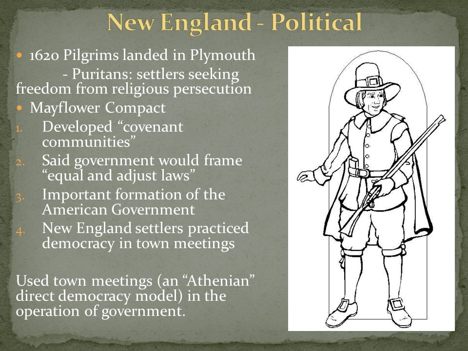 Characteristics Of The Colonies Ppt Video Online Download