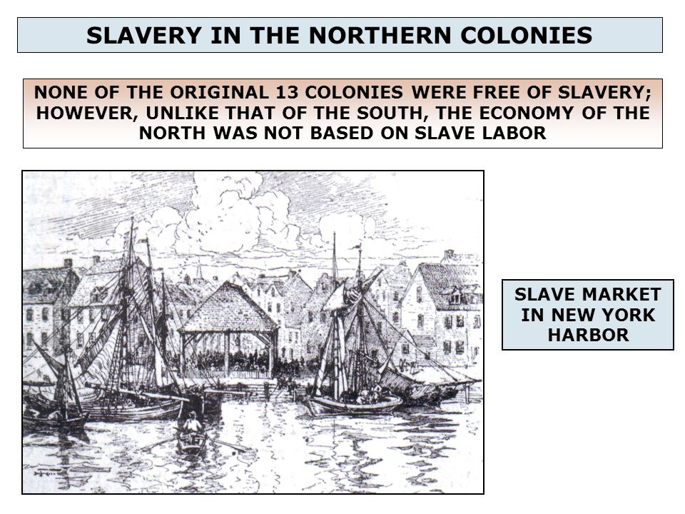 the role of slavery in the development of american colonies How did the search for a viable labor force affect the development of the southern colonies what was the role of african-american slavery.