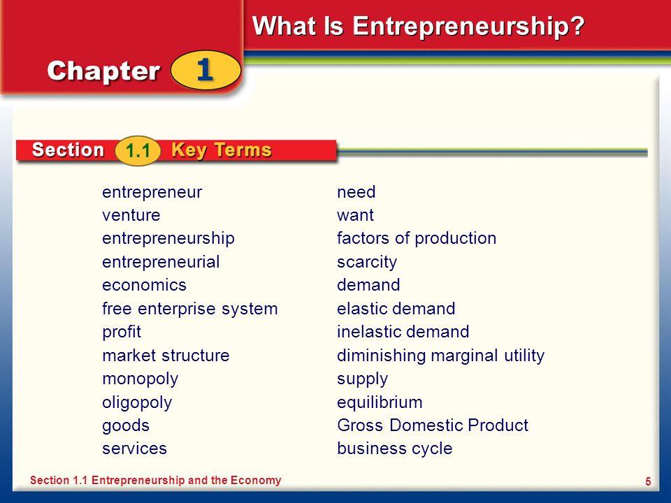 1.1 entrepreneur venture entrepreneurship entrepreneurial economics