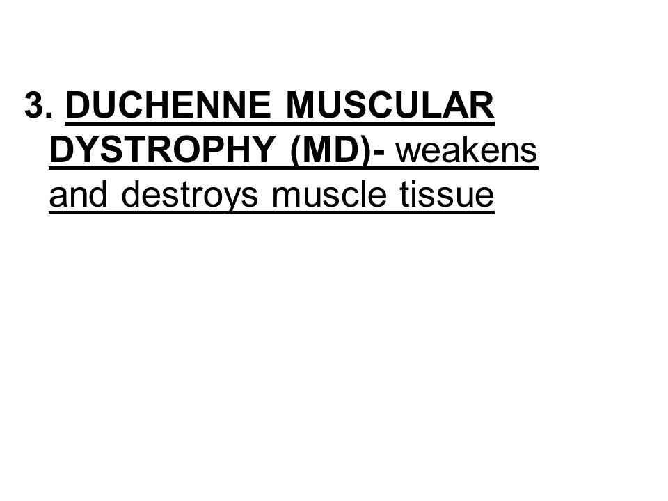 3. DUCHENNE MUSCULAR DYSTROPHY (MD)- weakens and destroys muscle tissue