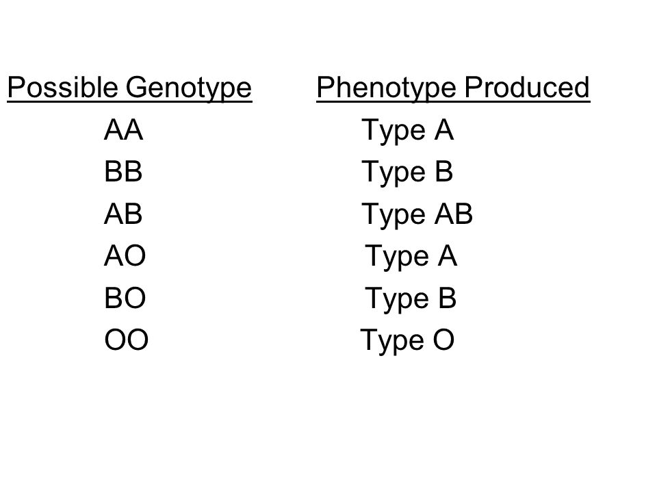 Possible Genotype Phenotype Produced