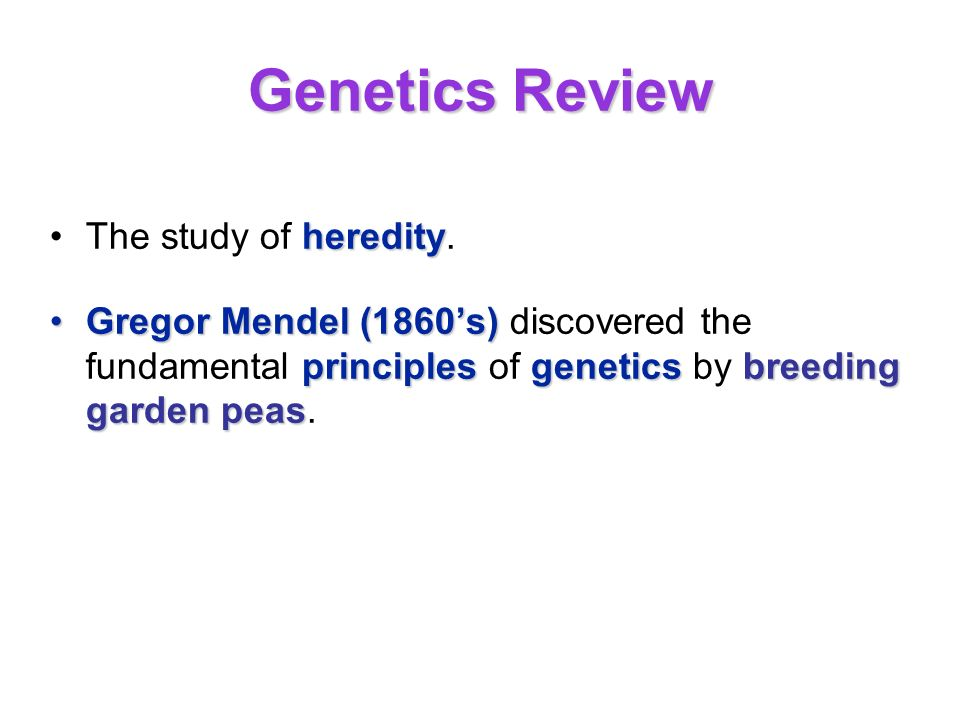 Genetics Review The study of heredity.