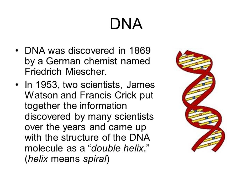 DNA DNA was discovered in 1869 by a German chemist named Friedrich Miescher.