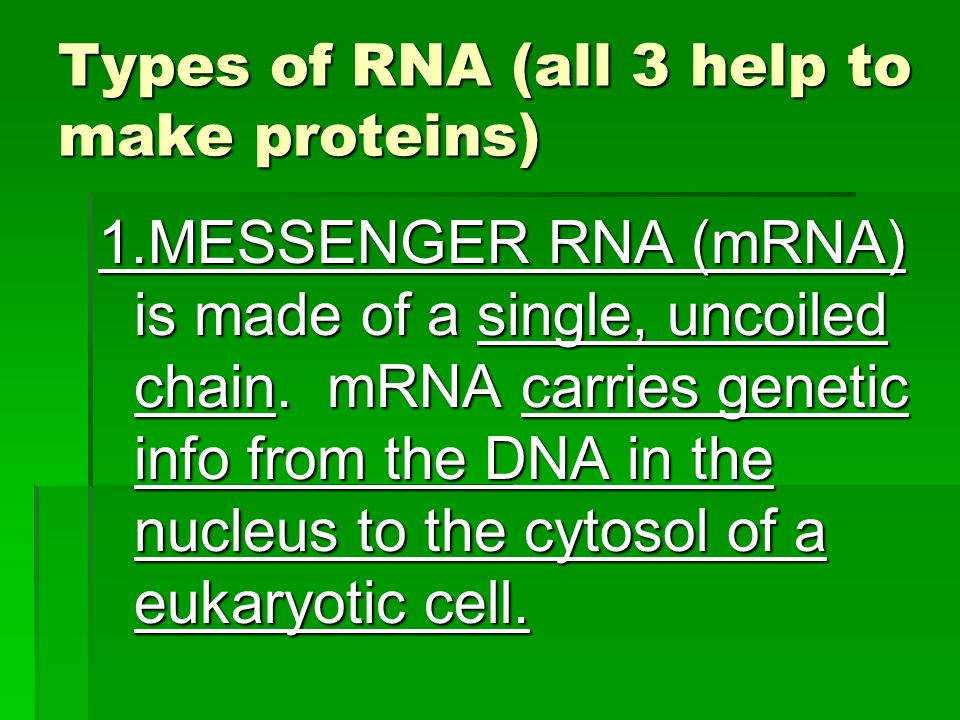 Types of RNA (all 3 help to make proteins)