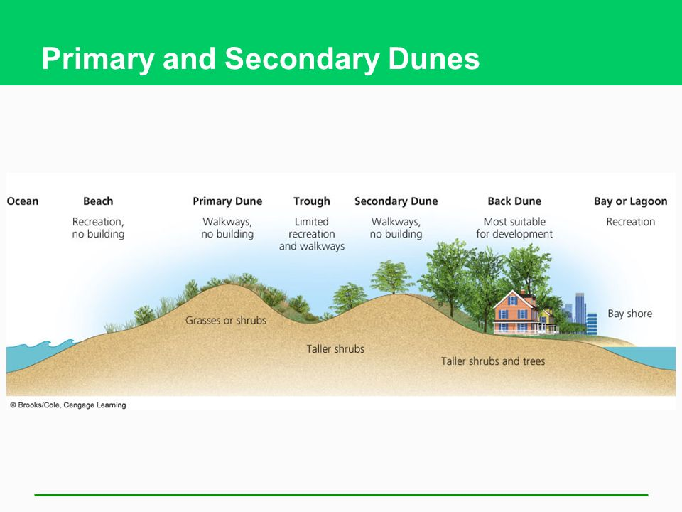 Primary and Secondary Dunes
