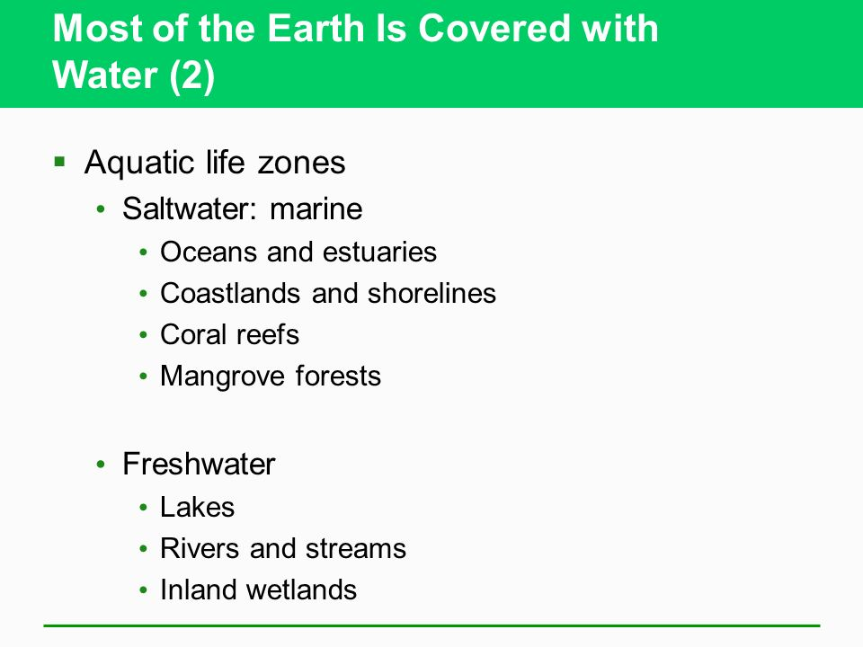 Most of the Earth Is Covered with Water (2)