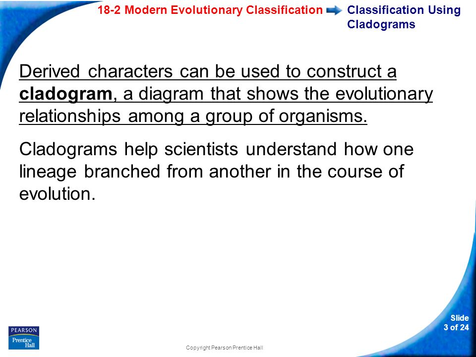 Classification Using Cladograms