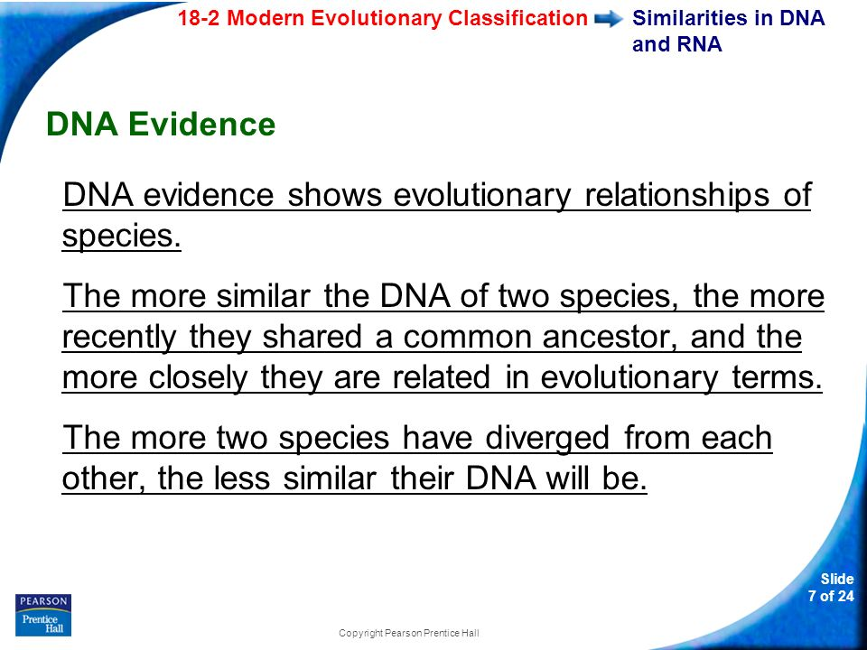 Similarities in DNA and RNA