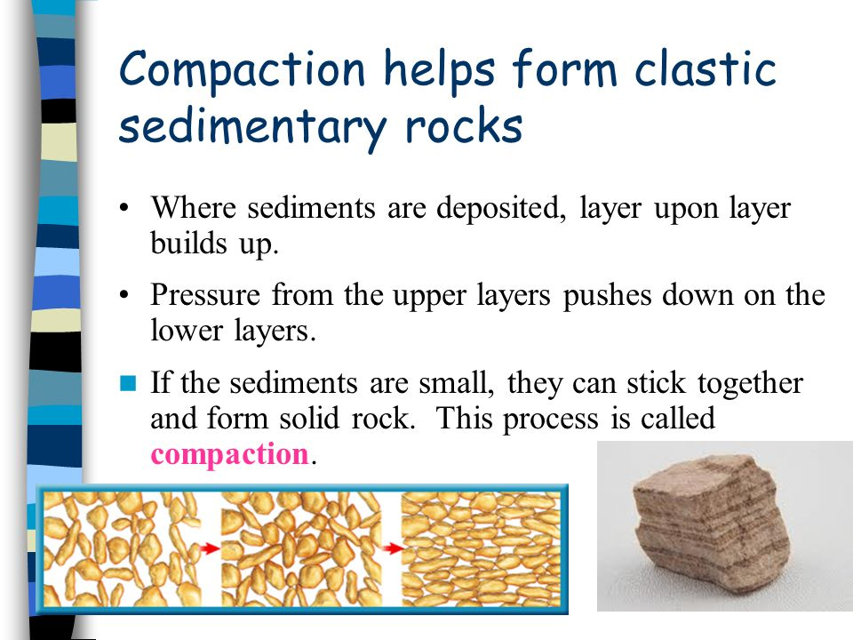 Compaction helps form clastic sedimentary rocks