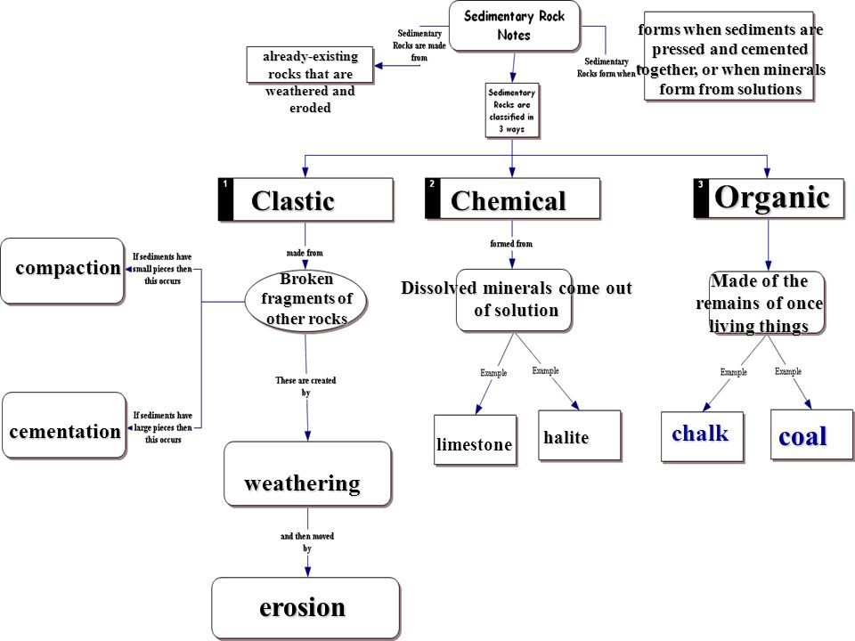 Organic Clastic Chemical coal erosion chalk weathering compaction