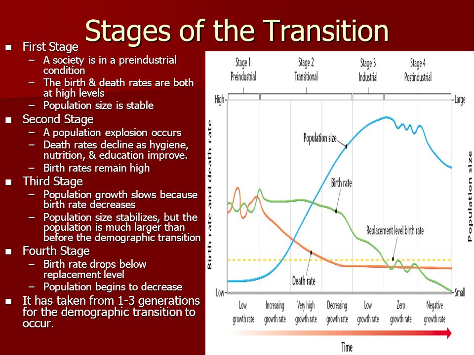 Stages of the Transition