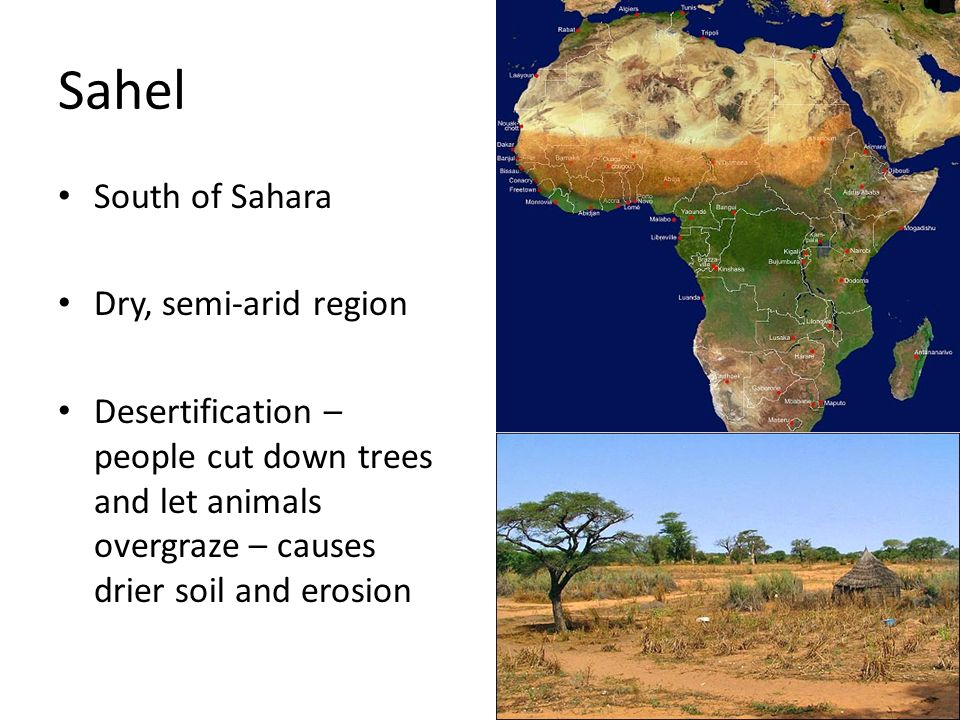 Sahel South of Sahara Dry, semi-arid region
