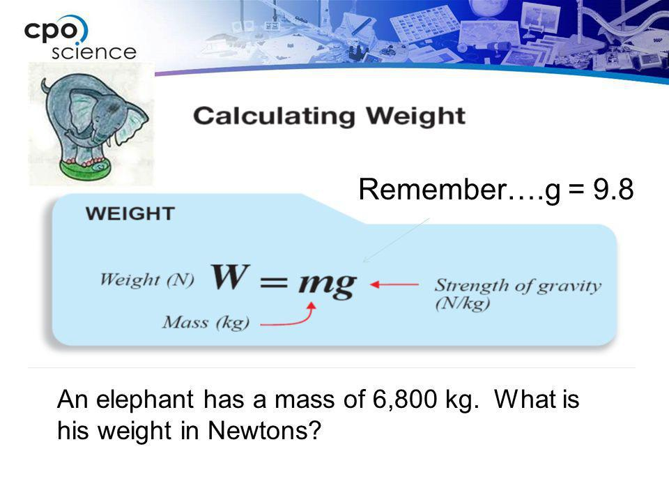 Remember….g = 9.8 An elephant has a mass of 6,800 kg. What is his weight in Newtons