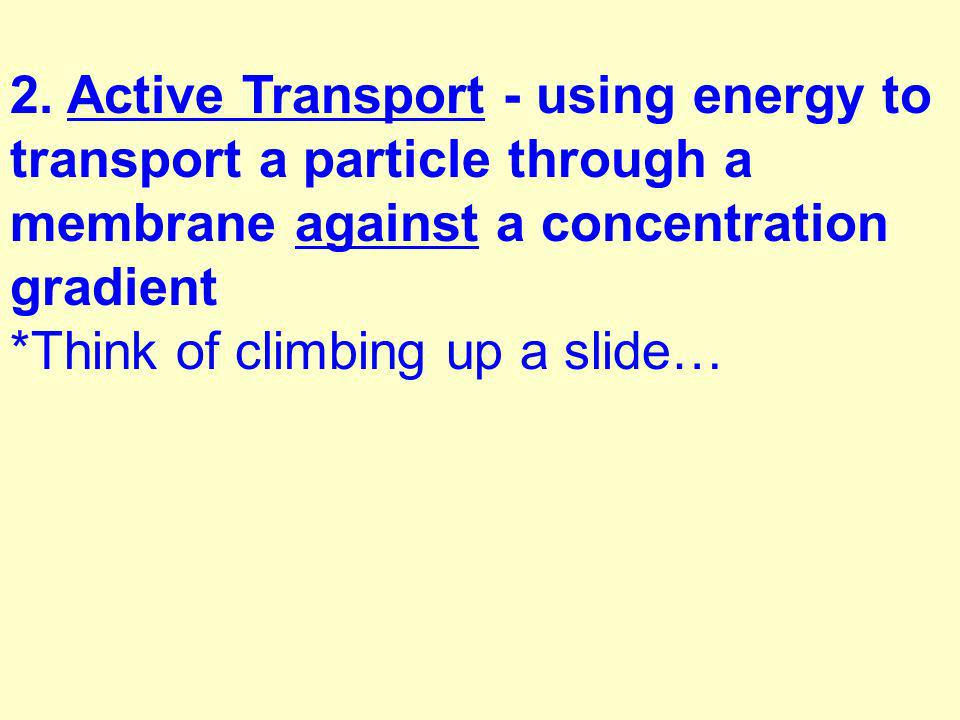 2. Active Transport - using energy to transport a particle through a membrane against a concentration gradient