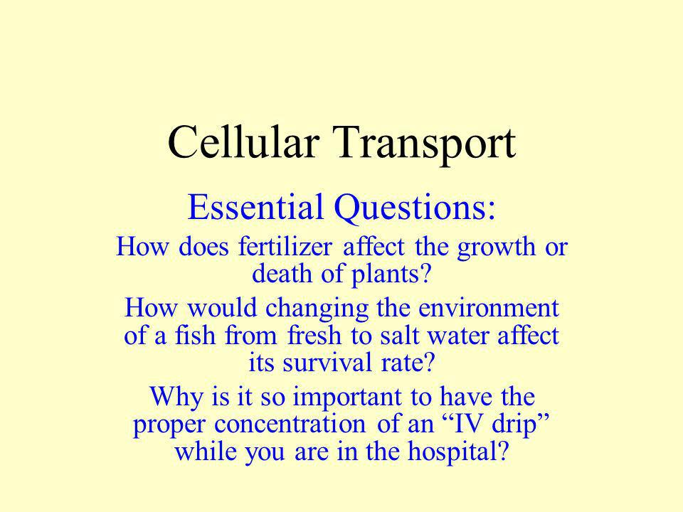 How does fertilizer affect the growth or death of plants