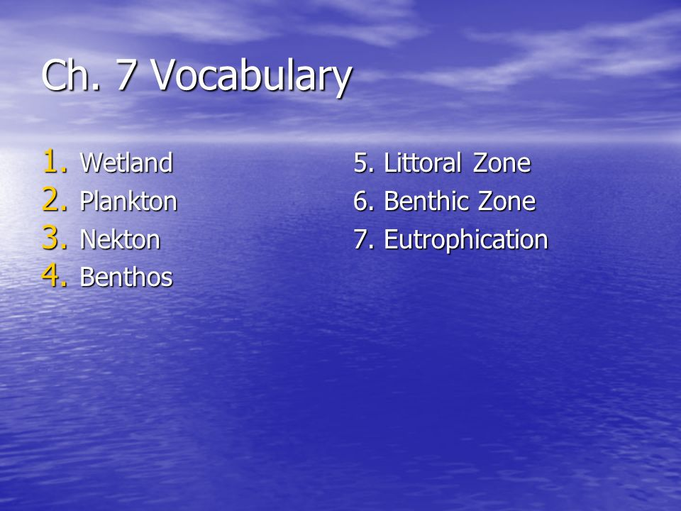 Ch. 7 Vocabulary Wetland Plankton Nekton Benthos