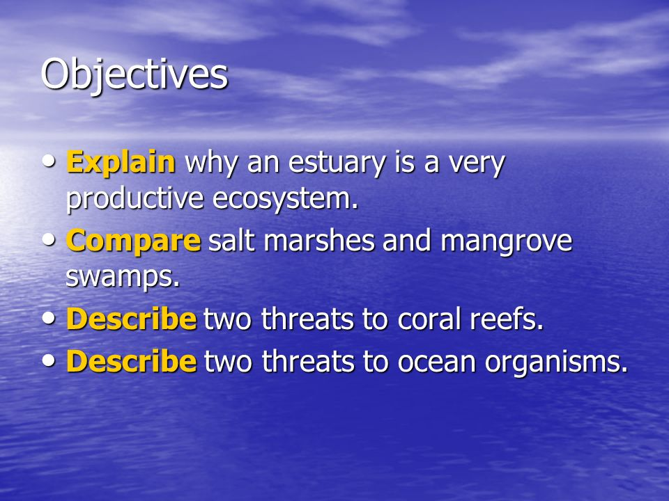 Objectives Explain why an estuary is a very productive ecosystem.