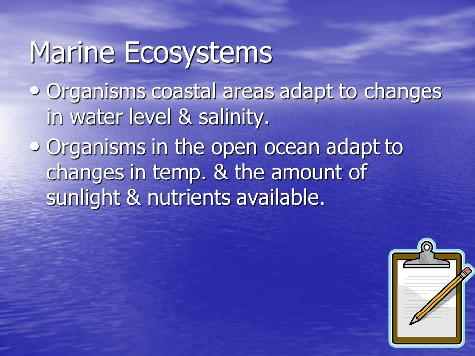 Marine Ecosystems Organisms coastal areas adapt to changes in water level & salinity.