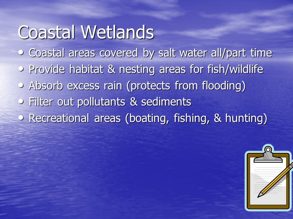 Coastal Wetlands Coastal areas covered by salt water all/part time