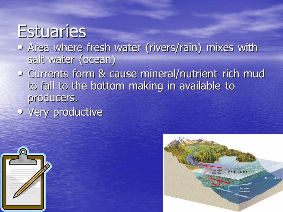 EstuariesArea where fresh water (rivers/rain) mixes with salt water (ocean)