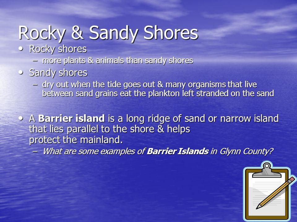 Rocky & Sandy Shores Rocky shores Sandy shores