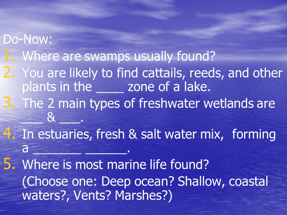 Do-Now: Where are swamps usually found You are likely to find cattails, reeds, and other plants in the ____ zone of a lake.