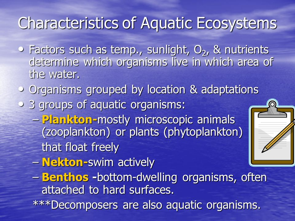 Characteristics of Aquatic Ecosystems