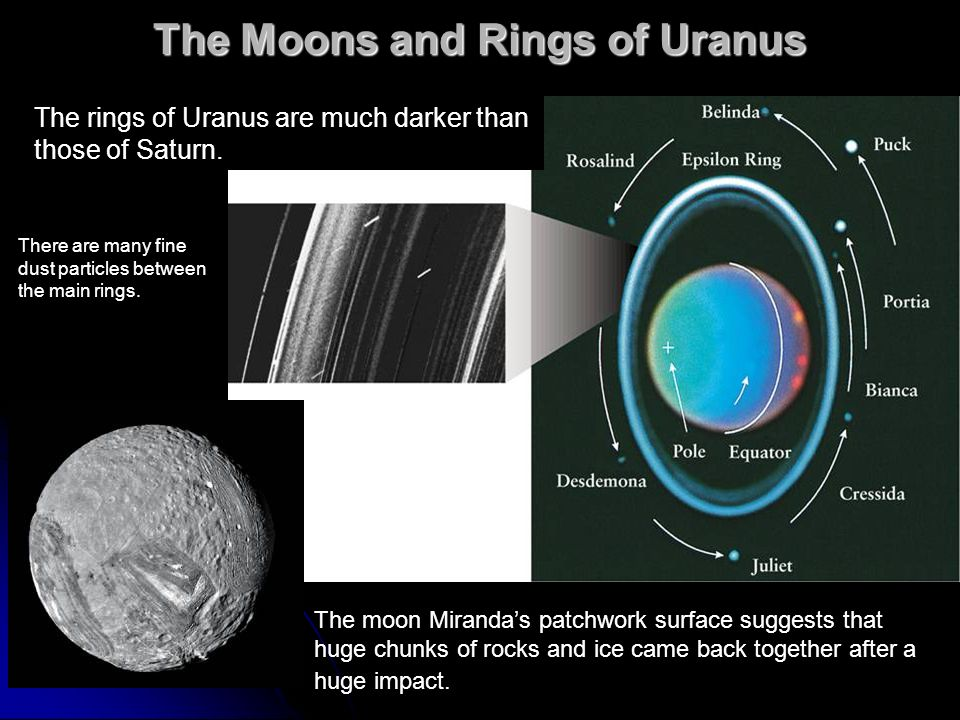 The Moons and Rings of Uranus