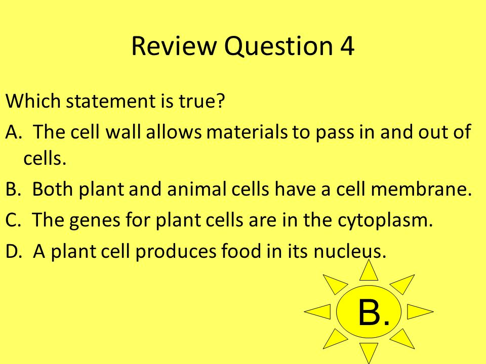 B. Review Question 4 Which statement is true