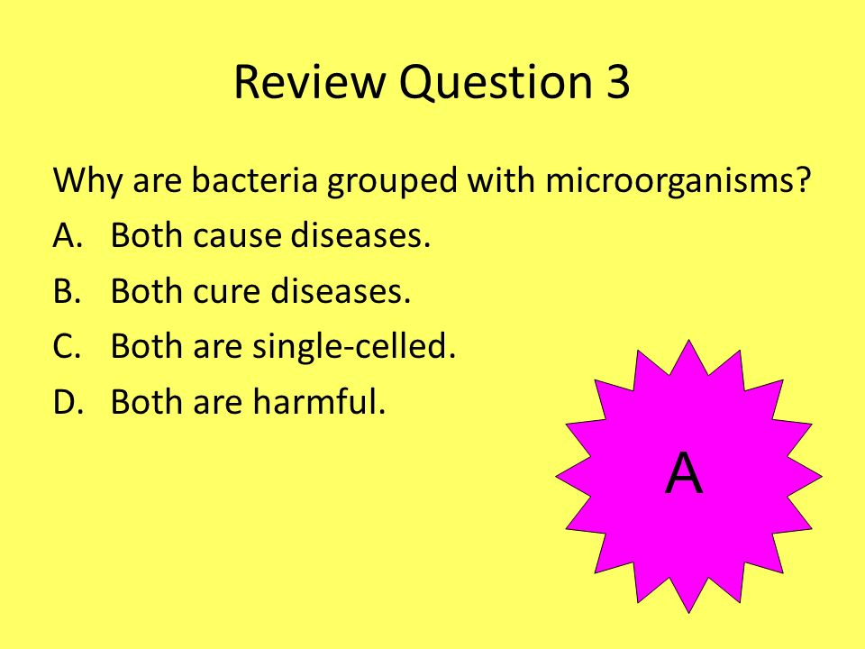 A Review Question 3 Why are bacteria grouped with microorganisms