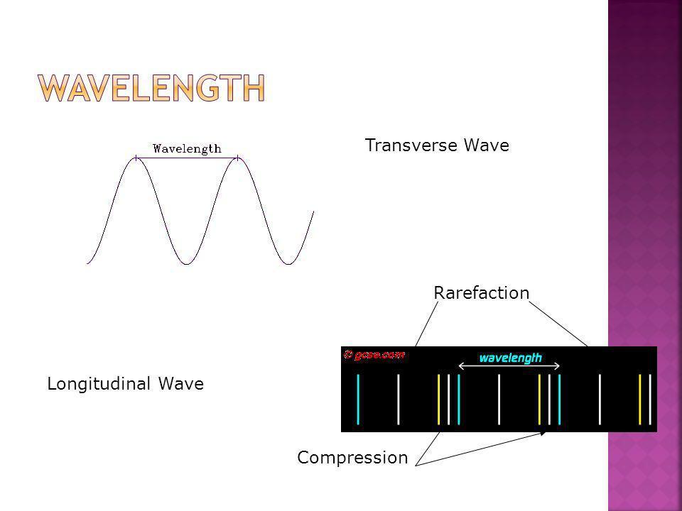 Wavelength Transverse Wave Rarefaction Longitudinal Wave Compression