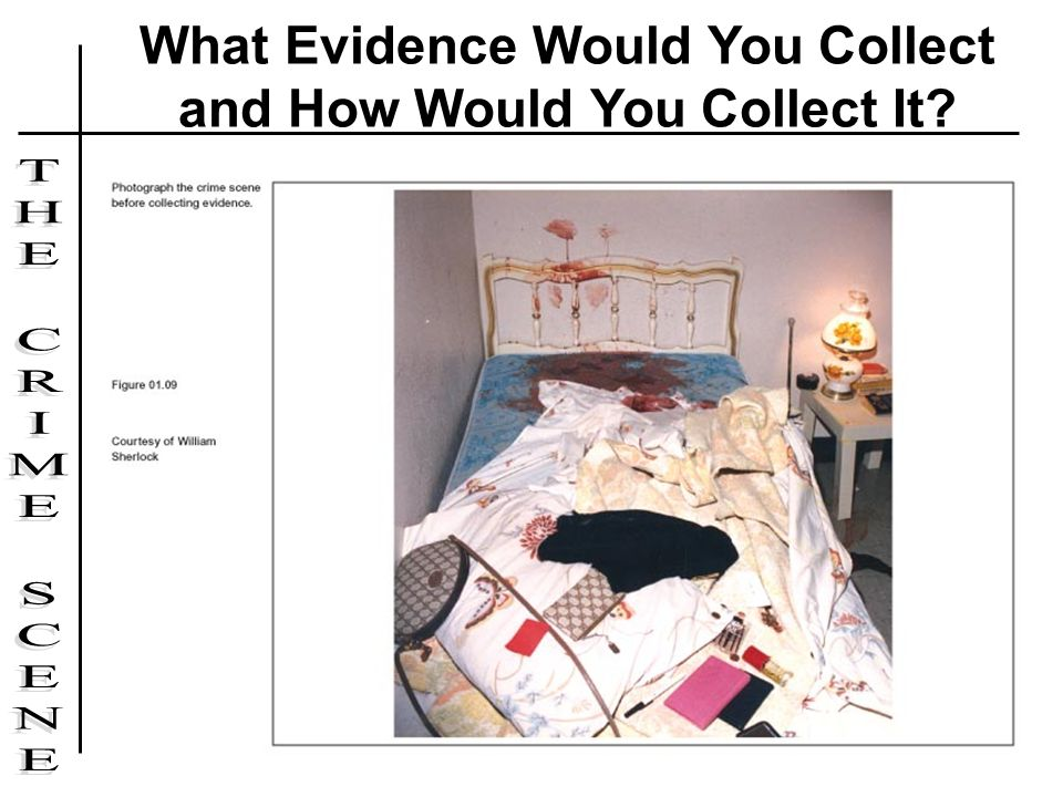 What Evidence Would You Collect and How Would You Collect It