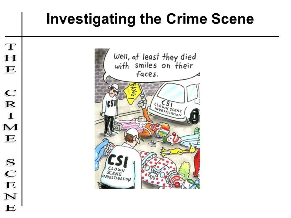 Investigating the Crime Scene