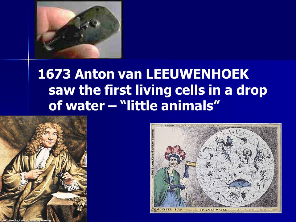 1673 Anton van LEEUWENHOEK saw the first living cells in a drop of water – little animals