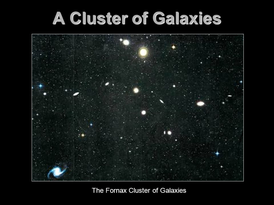 A Cluster of Galaxies The Fornax Cluster of Galaxies