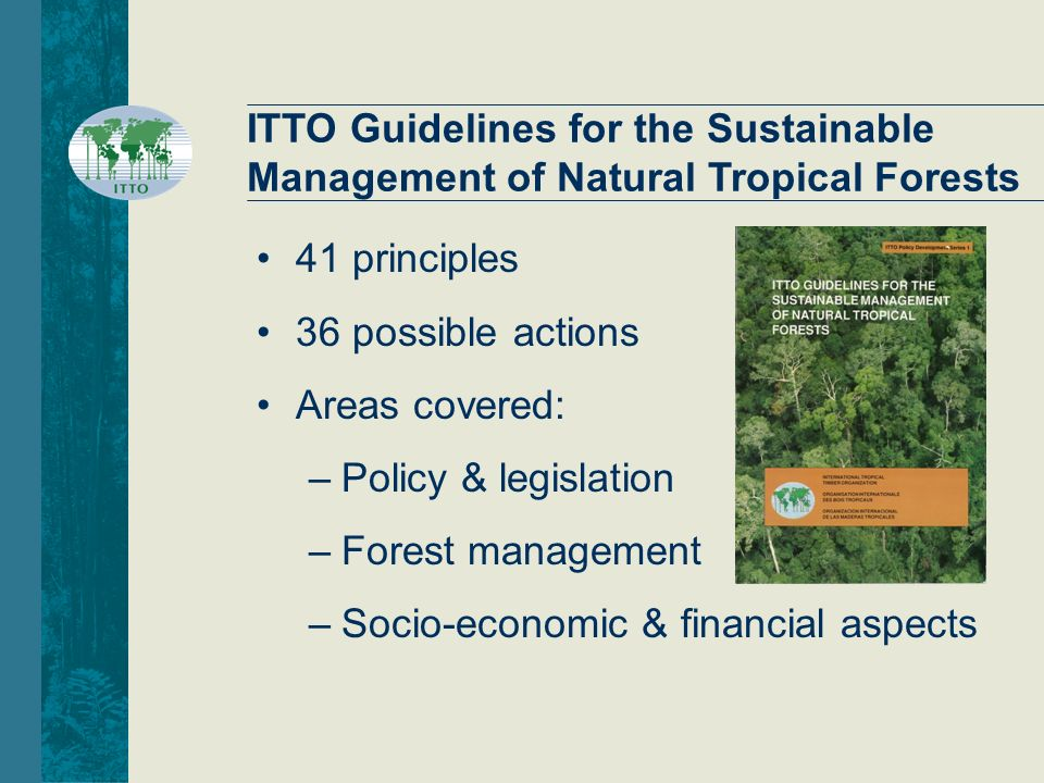 Sustainable Forest Management ~ Promoting the implementation of sfm in tropics ppt