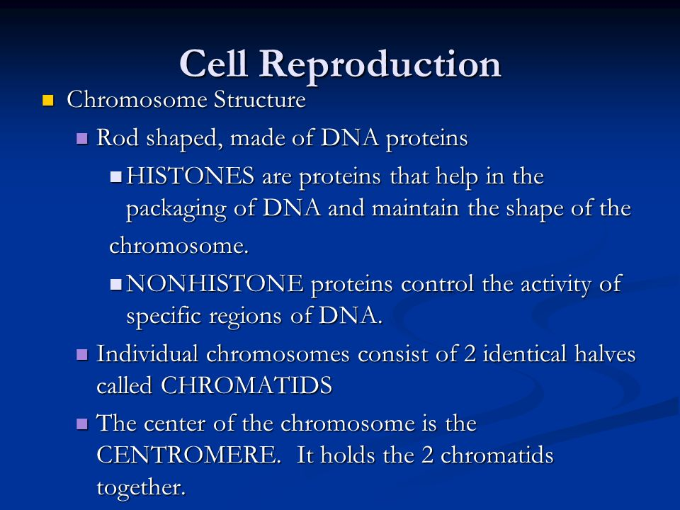 Cell Reproduction Chromosome Structure
