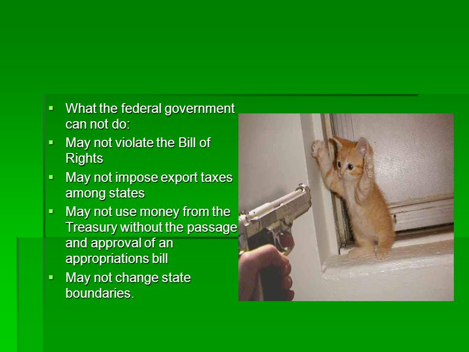 What the federal government can not do: