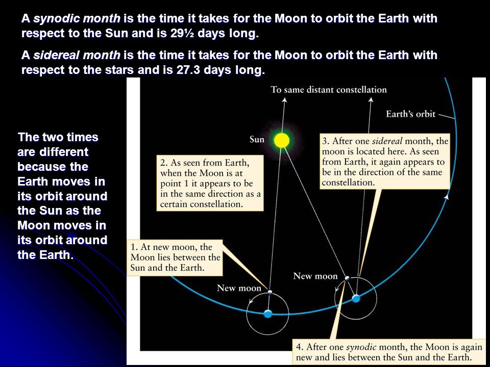 A synodic month is the time it takes for the Moon to orbit the Earth with respect to the Sun and is 29½ days long.