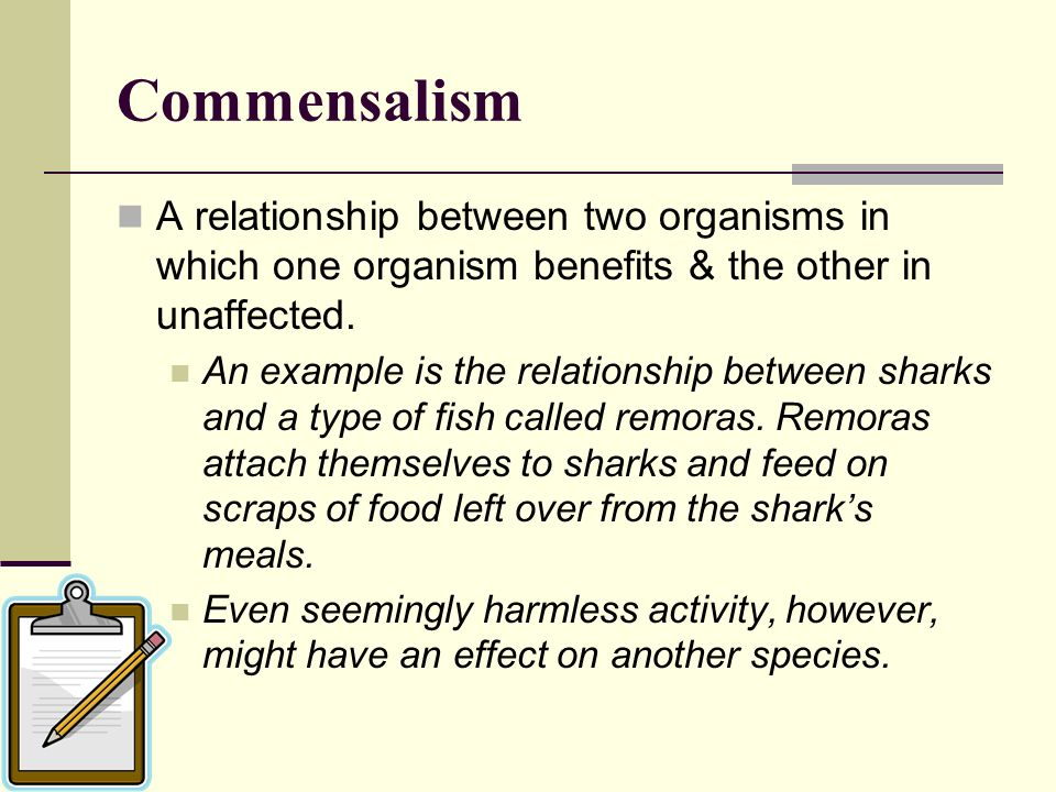 Commensalism A relationship between two organisms in which one organism benefits & the other in unaffected.