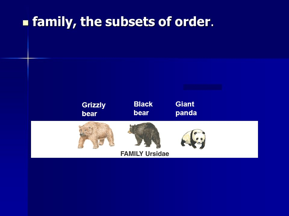 family, the subsets of order.